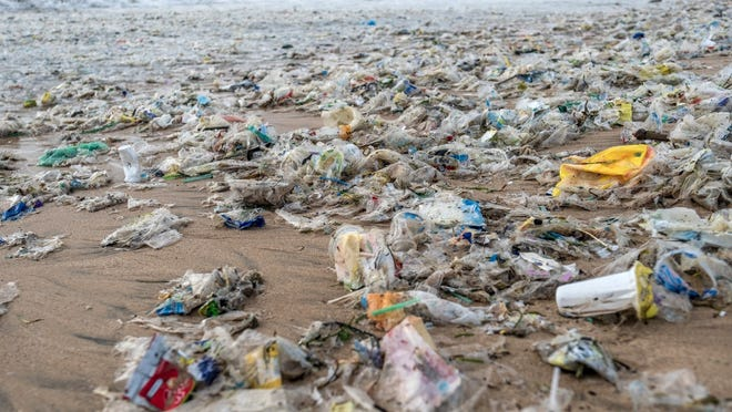 Beverage bottles, food packages, and shopping bags are among the most common plastics that wind up in garbage bins -- and eventually the oceans -- after only one use.