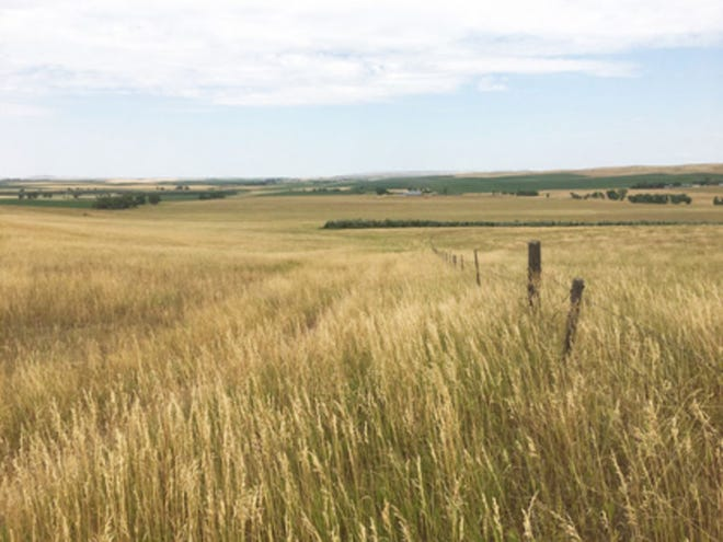 The Natural Resources Conservation Service offers many tips and advice on operating effective pasture lands in the Eastern Upper Peninsula.