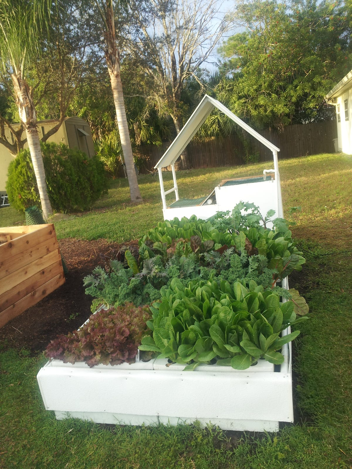 Aquaponic growing systems available for Brevard homes