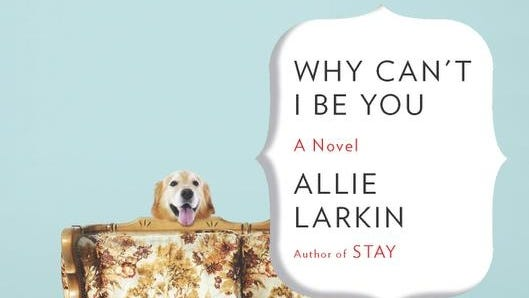"""Allie Larkin's book, """"Why Can't I Be You?"""""""
