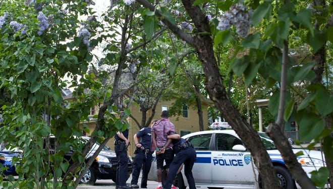 A youth being put into a cop car after a fight errupted on south ave outside the lilac festival. Police arrested several people and others fled the scene. Weapons were found.   - Nick Brandreth for the D,C
