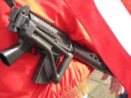 gun-assaulttypee.jpg