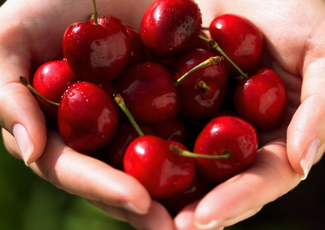 Cherries are in the farmers' markets now.