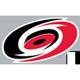 Výsledek obrázku pro carolina hurricanes logo