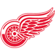 Výsledek obrázku pro detroit red wings logo
