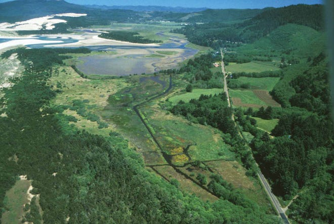 """The Beltz Property, near Pacific City on the southern end of Sand Lake Recreation Area, is planned to become a new """"nature-based"""" state park on the northern Oregon Coast."""