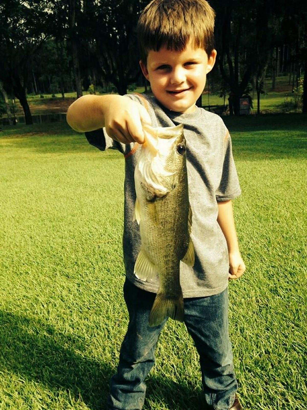 Keeping live bait   live
