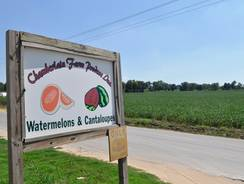 Chamberlain Farms in Owensville, Ind., was linked to a salmonella outbreak over cantaloupes.