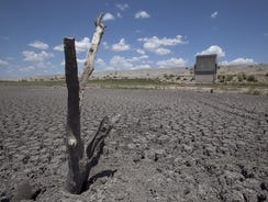 A dead tree rises out of a dried-up lake bed in San Angelo, Texas, in August 2011.
