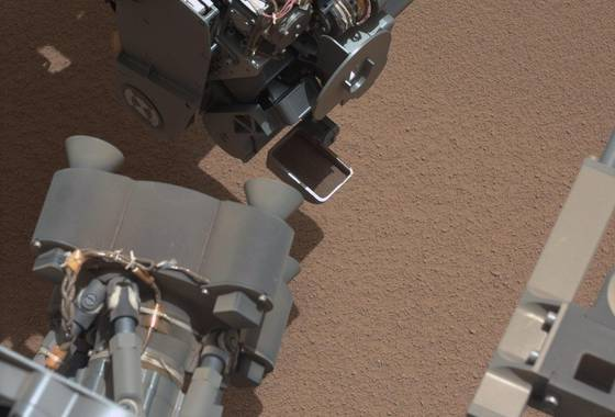 Rover paletta riflessi