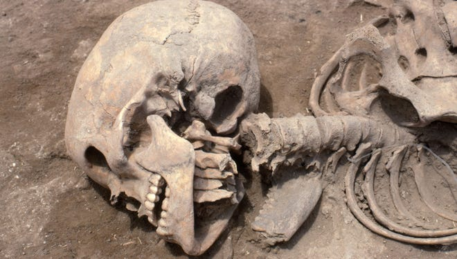 A human skeleton with broken neck, and the neck of a second individual, at Gordion