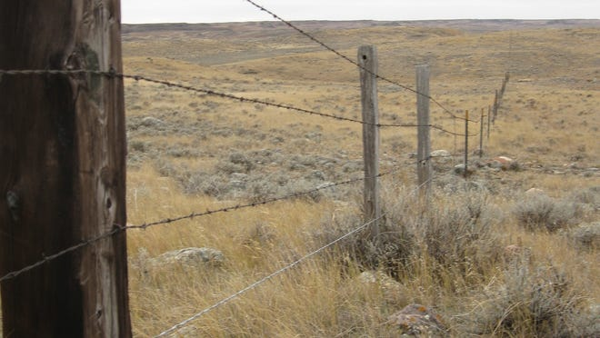 A fence that has been modified so the bottom wire is smooth and 18 inches off the ground, allows pronghorn to crawl safely under as they migrate.