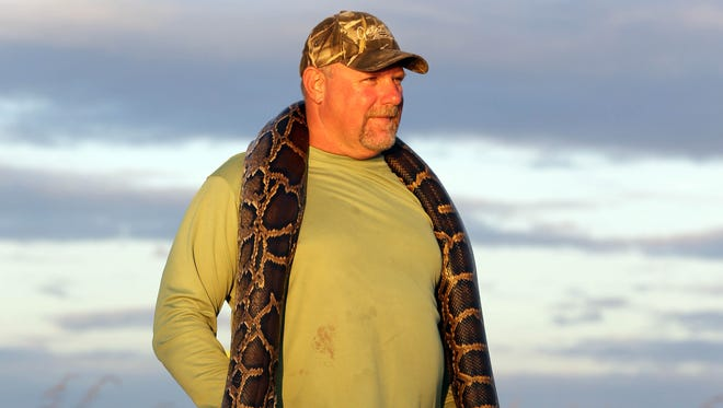 """Bill Booth of Bradenton, Fla. wears a dead Burmese python he caught around his neck as he shows it to journalists, Saturday, Jan. 19, 2013 in the Florida Everglades as part of the monthlong """"Python Challenge."""" Booth's snake measured an unofficial 11.59 feet."""