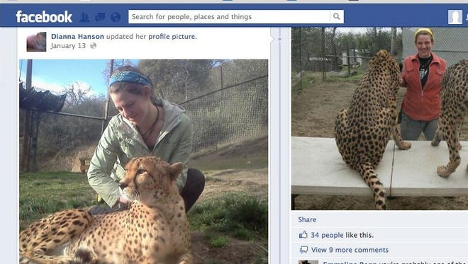 Dianna Hanson, 24, of Brier, Wash., was attacked and killed by a lion while working at the Cat Haven sanctuary near Fresno, Calif., on Wednesday. Her Facebook page shows her working with exotic cats.