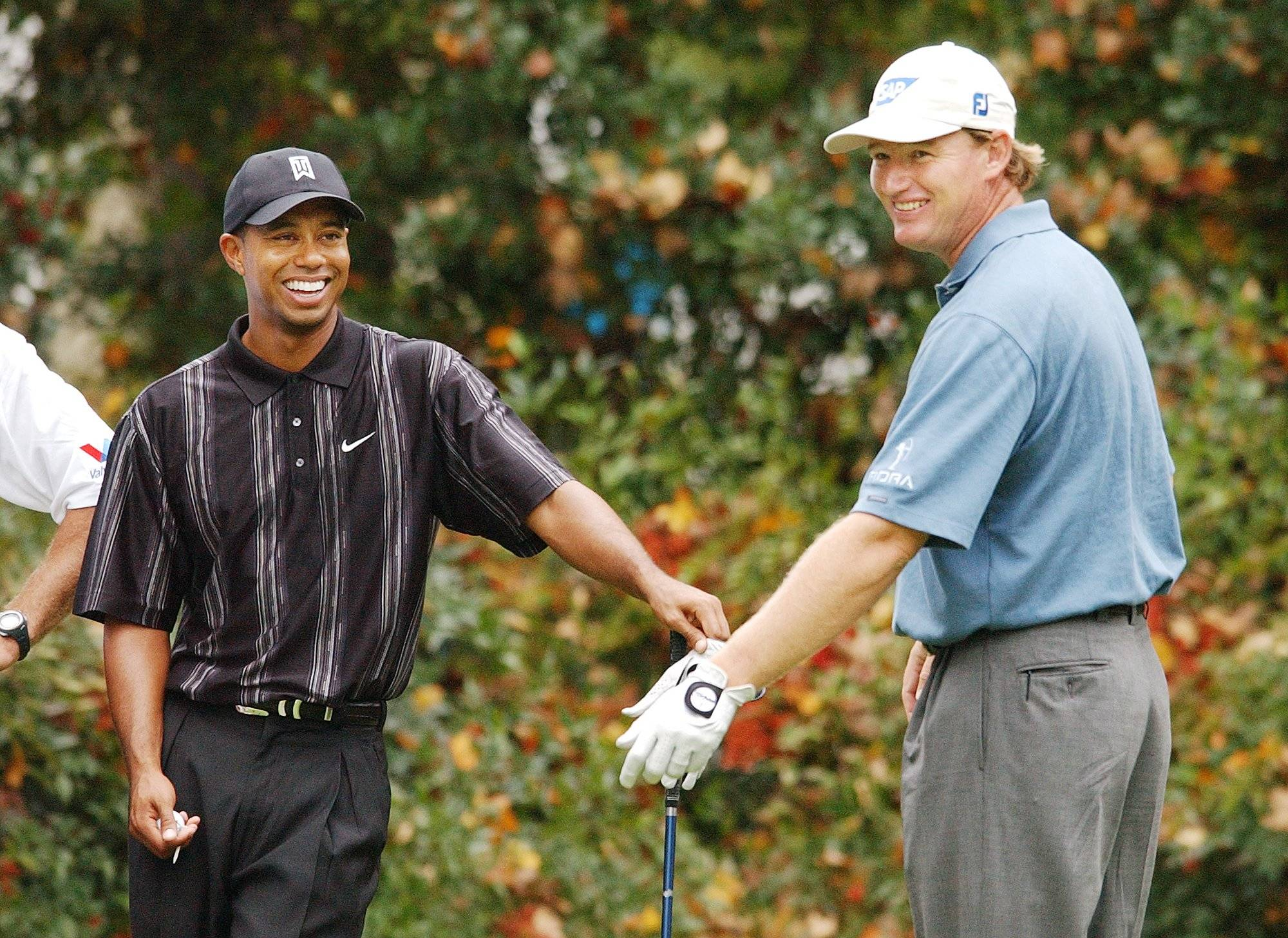 what will tiger do in 2013  win