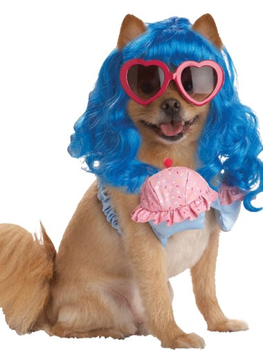 Pet owners plan on spending a record $370 million this year on Halloween costumes for their pets, which is nearly 20% more than last year. Some of the most popular Halloween costumes for dogs, according to Halloween costume retailers,  include: Pup-A-Razzi Cupcake Girl with a cupcake pink bra, blue wig and heart-shaped glasses.