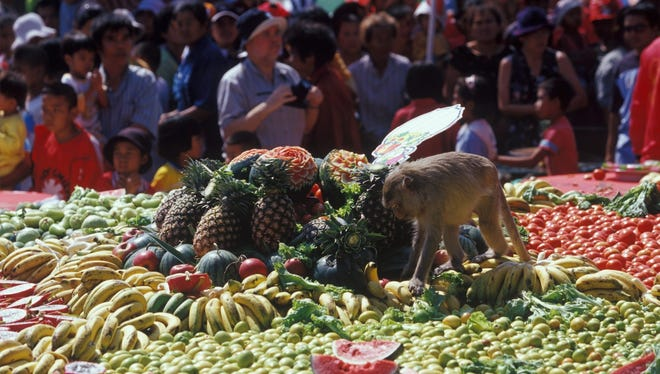 Monkeys get to feast at the annual Monkey Buffet Festival in Thailand, in which villagers prepare an elaborate presentation of food for the primates.