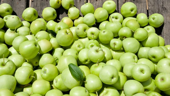 This year's apple crop is shaping up as the smallest since 1986.