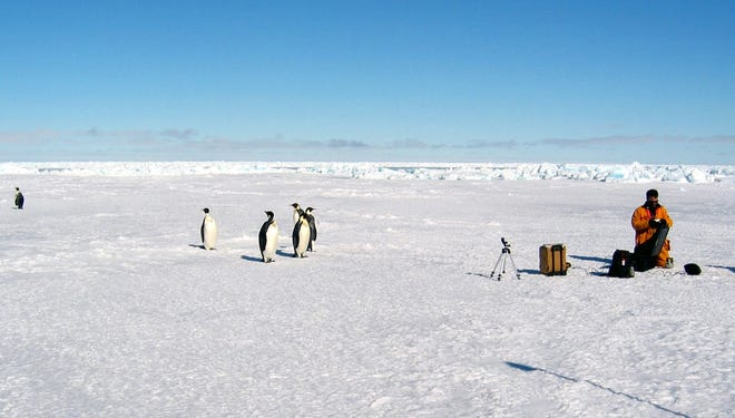 Emperor penguins and researchers share space on Antarctic sea ice in 2003. In this confounding region of the world, spreading ice may be an odd signal of man-made climate change.