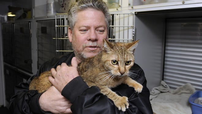 Bill Ryan, of Inwood, N.Y., comforts his cat Amy before leaving her at a pet shelter at Mitchell Park's Field House, run by the Nassau County Office of Emergency Management and Pet Safe Coalition, on Oct. 28 in Uniondale, N.Y. Even pets can be freaked out by storms, experts caution.