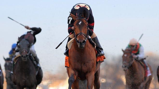 Awesome Feather, with jockey Jeffrey Sanchez,  won the Gazelle at Aqueduct last November.