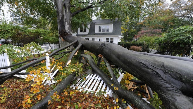A huge tree split and fell over the front yard of a home on Carpenter Avenue in the aftermath of Hurricane Sandy in Sea Cliff, N.Y., on Tuesday.