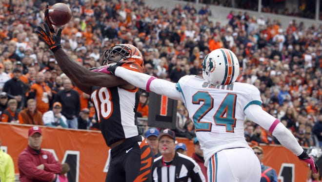 Bengals wide receiver A.J. Green pulls in a touchdown pass against the Miami Dolphins, one of seven for him on the season.