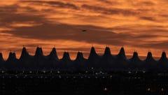 Denver International Airport Guide