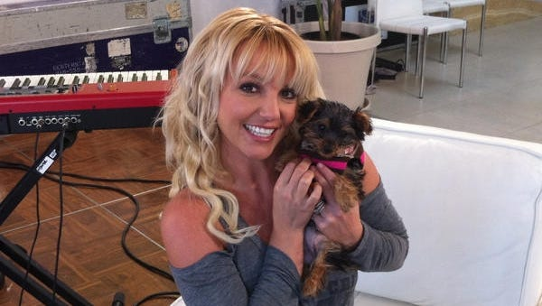Britney Spears shows off 'little baby girl' Hannah.