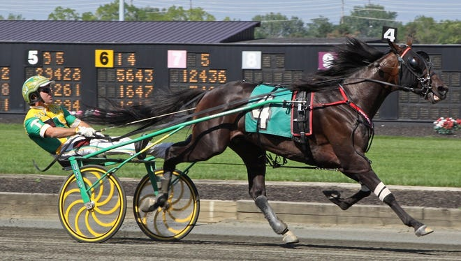 Chapter Seven, driven by Tim Tetrick, won eight of the 10 events he was entered in in 2012.
