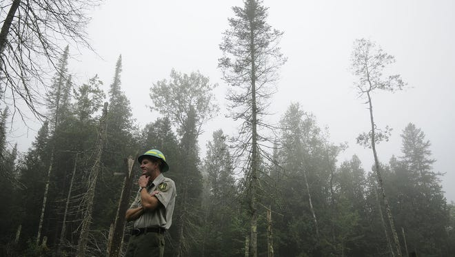 Jeff Seefeldt,  a district ranger for the U.S. Forest Service, said the large marijuana-growing operations on national forest land 'disgust' him.