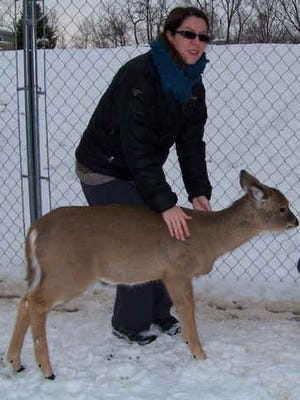An Indiana couple who rescued an injured deer fawn, nursed it back to health and raised it to maturity face the possibility of jail time and a fine after state officials charged them with a misdemeanor for harboring the animal. Jennifer Counceller and her husband, Jeff, face up to a $500 fine and 60 days in jail.