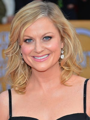 Amy Poehler arrives at the Screen Actors Guild Awards on Jan. 27. Her book will be out in 2014.