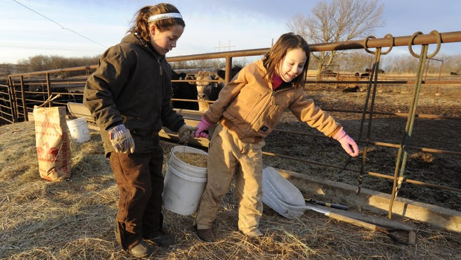 Emily and Karlie Albright carry feed for their 4-H steers.  Karlie's last 4-H steer was sold to the Beef for Seniors program.