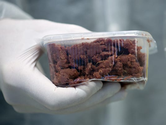 horse meat investigation