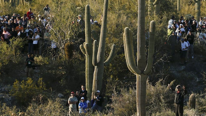 Fans stand in the brush while watching play on the 18th green in the quarterfinal round of play during the Match Play Championship golf tournament.