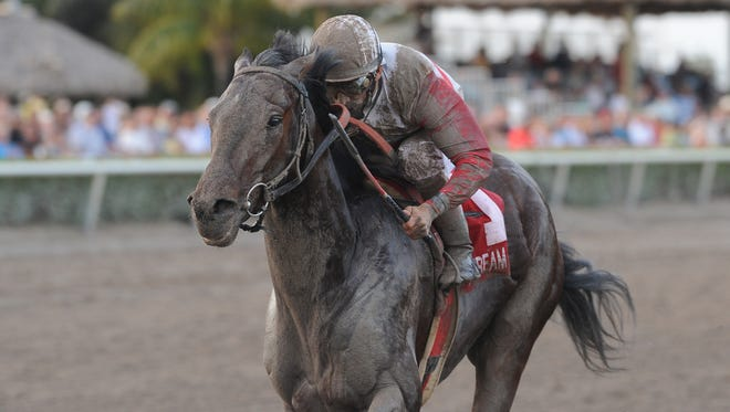 Orb, ridden by John R. Velazquez,  heads to the finish to win the Fountain of Youth Stakes at Gulfstream Park Saturday,