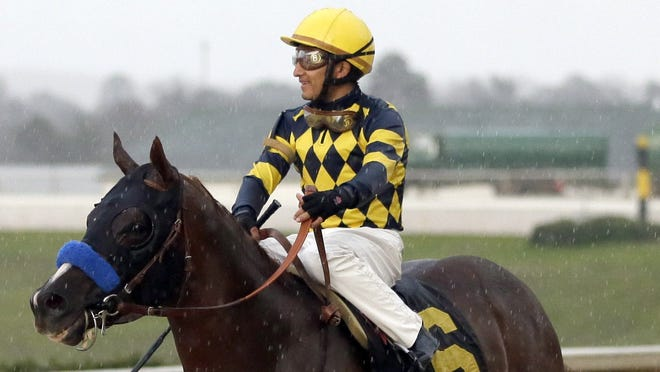 Jockey Rafael Bejarano rides Super Ninety Nine on the track at Oaklawn Park after winning the  $300,000 Southwest Stakes on Feb. 18. Super Ninety Nine is 10-1 in the Kentucky Derby Future Wagers pool, tied with Verrazano.
