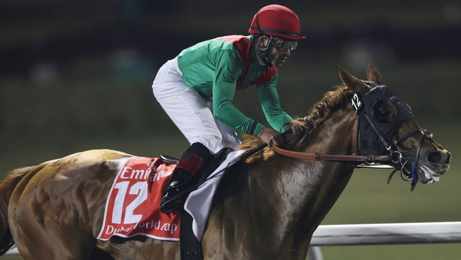 U.S. horse Animal Kingdom, ridden by Joel Rosario, won the $6,000,000 1st prize for winning the Dubai World Cup Saturday in the  United Arab Emirates.