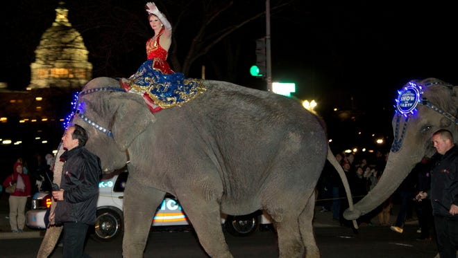 An Asian elephant with the Ringling Bros. and Barnum & Bailey similar to this one was injured in a drive-by shooting in Tupelo, Miss., on Tuesday, April 9, 2013.