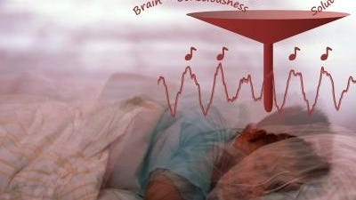 Playing sounds synchronized to the rhythm of the slow brain oscillations of people who are sleeping enhances these oscillations and boosts their memory. This demonstrates an easy and noninvasive way to influence human brain activity to improve sleep and enhance memory.