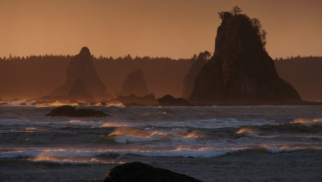 Sea stacks dot the Pacific Ocean shore at Olympic National Park in Washington.