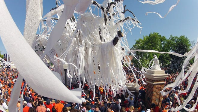 Auburn fans roll the Toomer's Corner trees for the last time following Auburn A-Day spring game at Jordan-Hare Stadium.