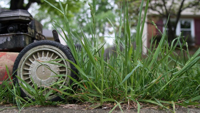 More than 17,000 children a year are injured by lawn mowers, pediatricians say.