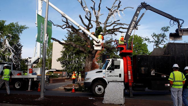 Workers remove a limb from the historic oak trees at Toomer's Corner in Auburn on Tuesday.  The trees had to be removed after an Alabama fan poisoned them.