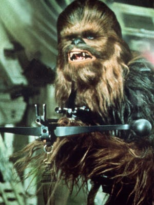 Those who are working on perfecting their Chewbacca impression should check out Peter Mayhew as Han Solo's Wookiee co-pilot in the original 'Star Wars.'