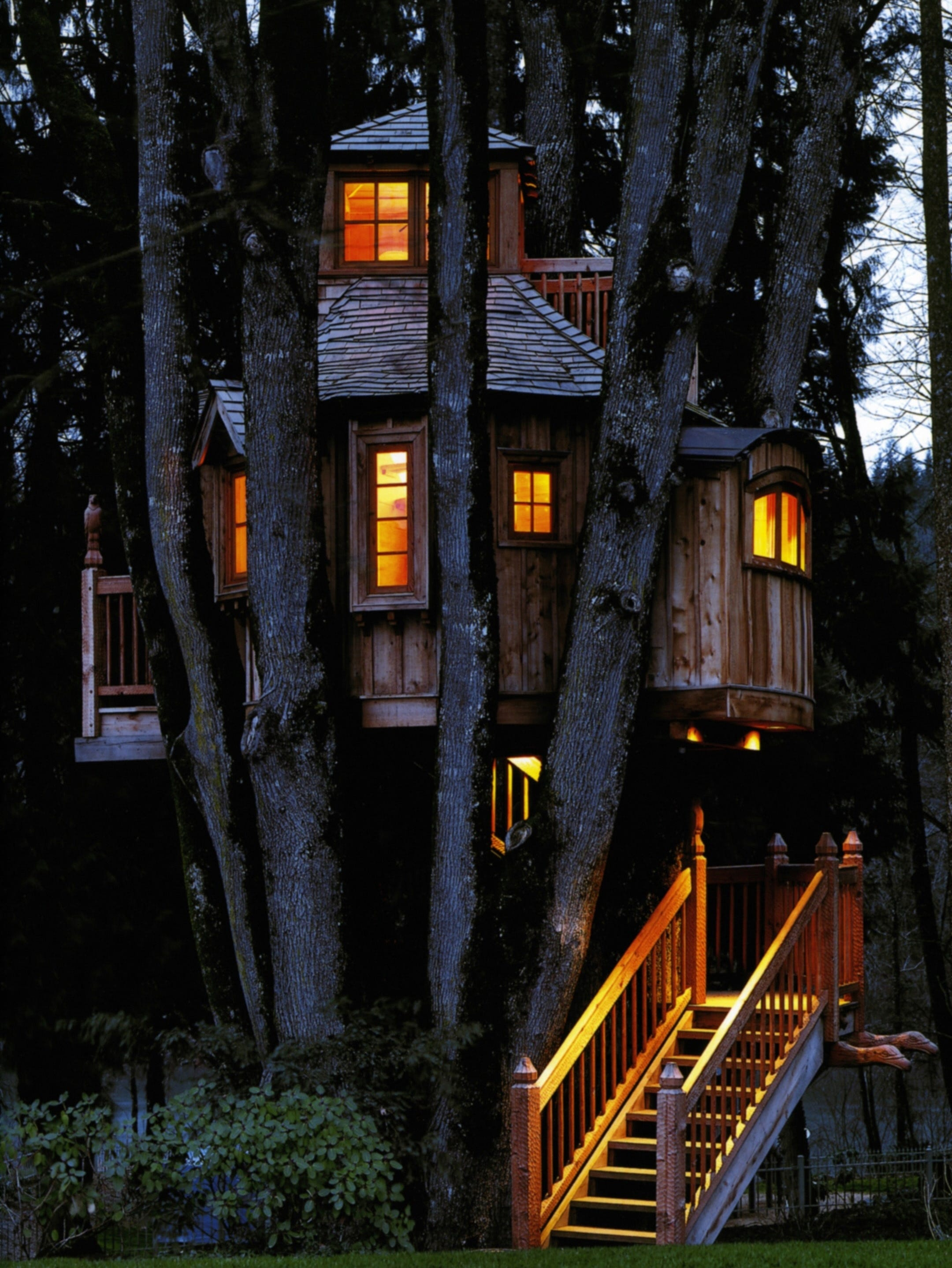 Picture of: Treehouse Masters Explores Creations Around Country