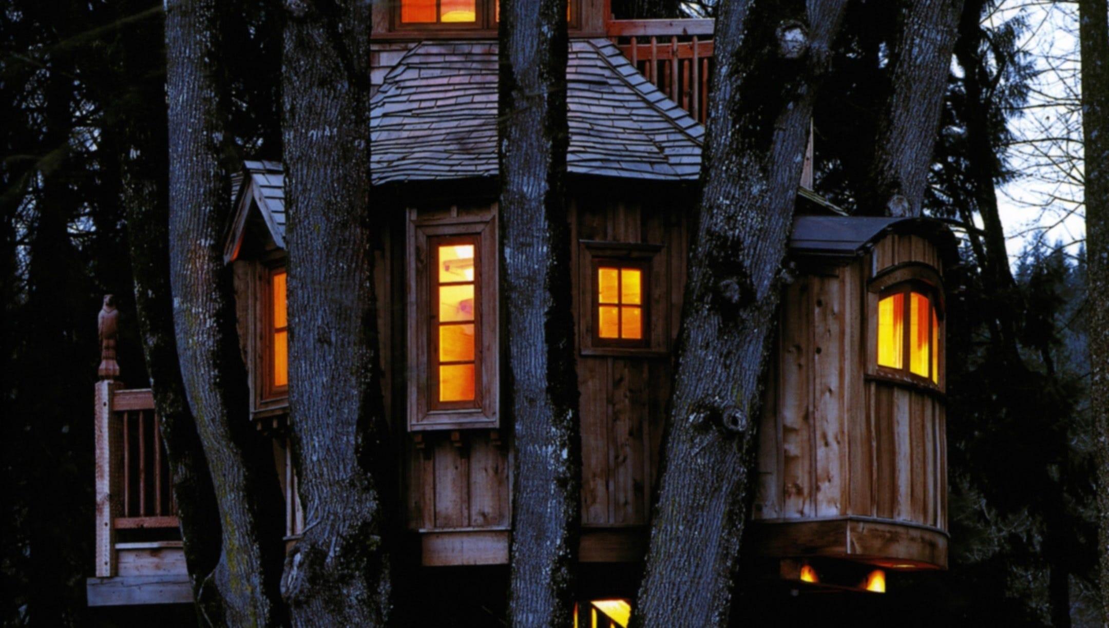 treehouse masters irish cottage. Brilliant Cottage U0027Treehouse Mastersu0027 Explores Creations Around Country With Treehouse Masters Irish Cottage U