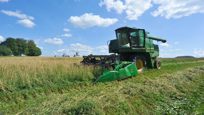 A combine cuts a path through a wheat field in Vermont in 2011.