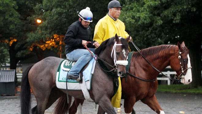 Preakness winner Oxbow, left, is guided by trainer D. Wayne Lukas, right, to his barn at Belmont Park on Friday. The colt will try to make it two victories in a row Saturday.